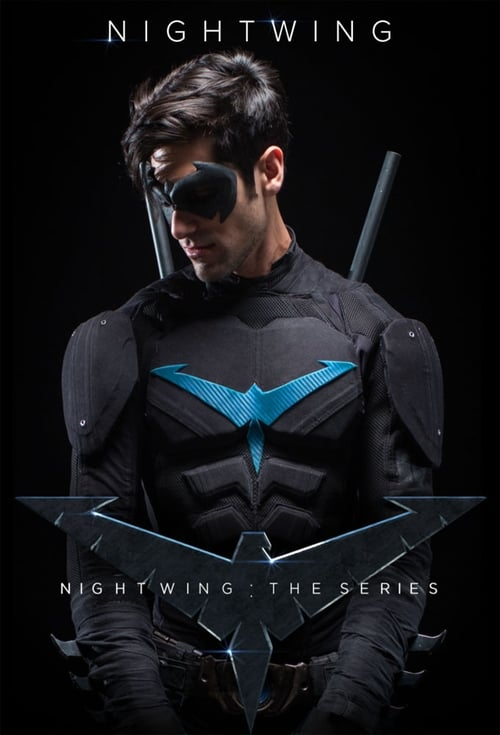 Poster della serie Nightwing: The Series