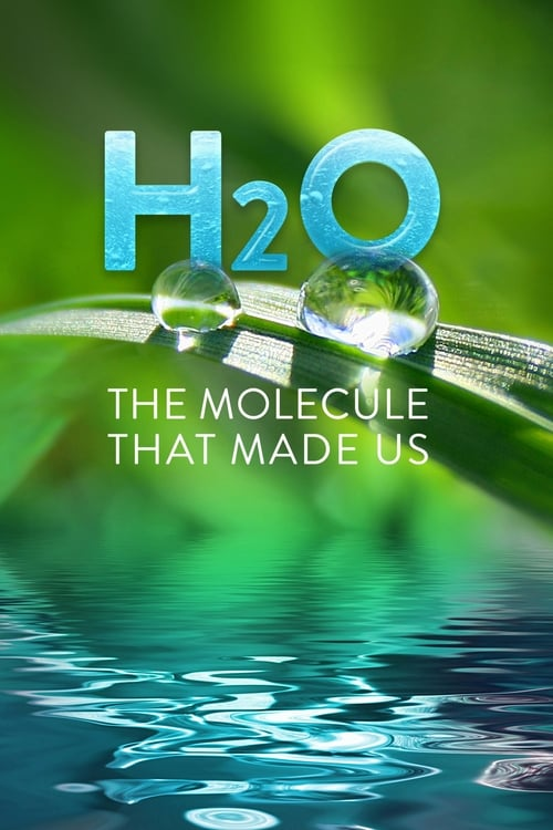 Poster della serie H2O: The Molecule that Made Us