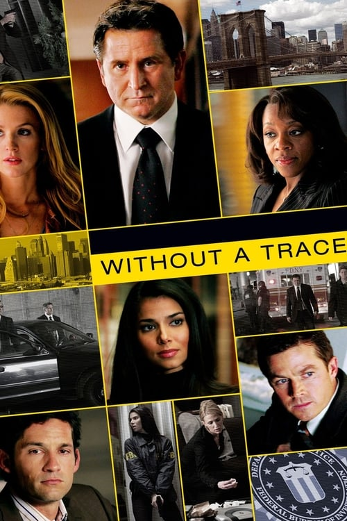 Poster della serie Without a Trace