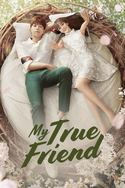 Poster della serie My True Friend