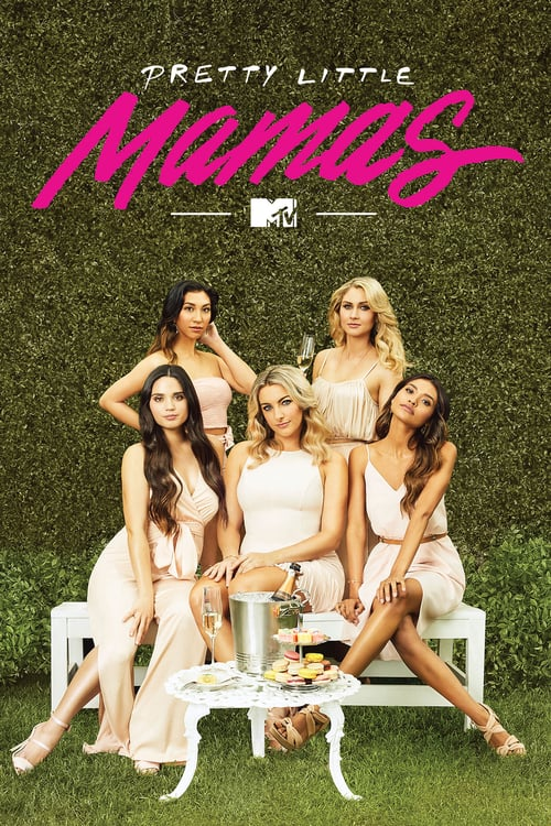 Poster della serie MTV's Pretty Little Mamas